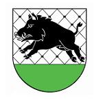 Gmina Debrzno